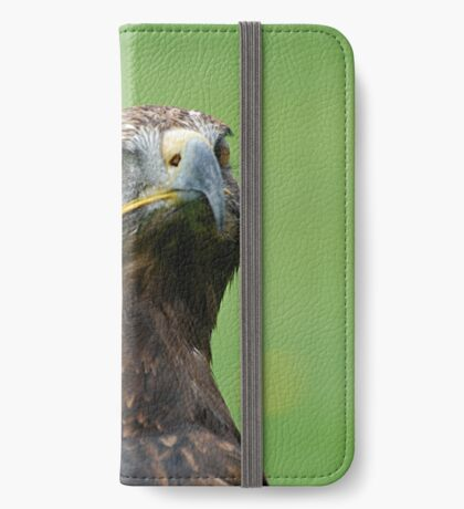 Steppe Eagle  iPhone Wallet/Case/Skin