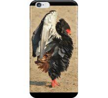 Bateleur Eagle - African Wildlife - Beautiful Anger iPhone Case/Skin