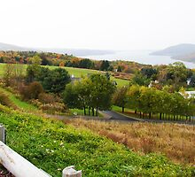 The Foot of Canandaigua Lake, Canandaigua, New York by Mary Ellen Tuite Photography