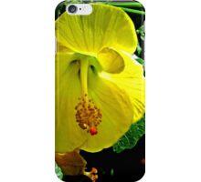 Yellow Hibiscus iPhone Case/Skin