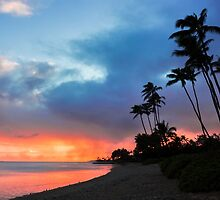 Kawaikui Sunset 2 by Leigh Anne Meeks