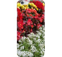 Rows of Color iPhone Case/Skin