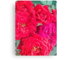 Roses of Red Canvas Print