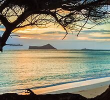 Waimanalo Sunrise 1 by Leigh Anne Meeks