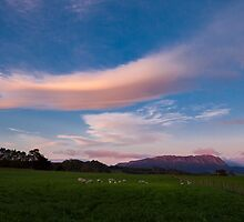 Rural Dawn Tasmania by Kelly Slater