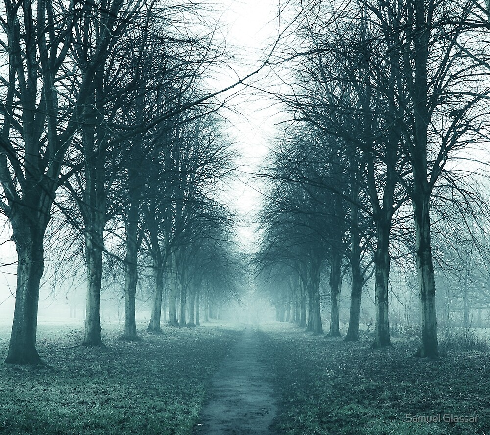 Path to the unknown by Samuel Glassar