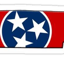 Tennessee State Flag & Outline Sticker