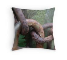 Padlocked Throw Pillow