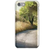 We'll walk this path together iPhone Case/Skin