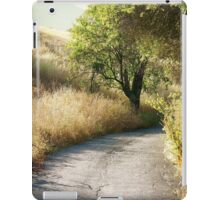 We'll walk this path together iPad Case/Skin