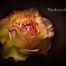 Flowers are Earths Way of Smiling by Kim Andelkovic