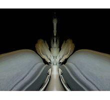 Biomechanicals Photographic Print