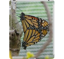 Nature in Repose iPad Case/Skin