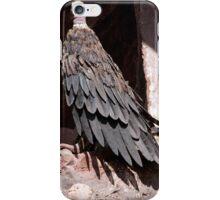 Condor iPhone Case/Skin