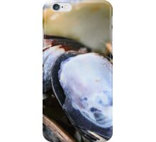 Treasure at Botany Bay iPhone Case/Skin