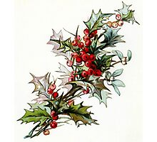 Vintage Holly Berries Photographic Print