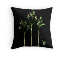 Bemused Berries Throw Pillow