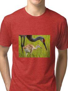 Sandhill crane parent with chick Tri-blend T-Shirt