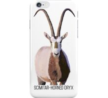 Scimitar-Horned Oryx iPhone Case/Skin