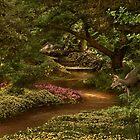 Memories of Seasons Past - Harmony by John Poon