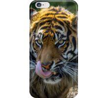 Sumatran Tiger iPhone Case/Skin