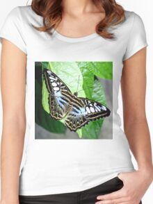 Blue Tiger Butterfly Women's Fitted Scoop T-Shirt