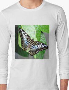 Blue Tiger Butterfly Long Sleeve T-Shirt