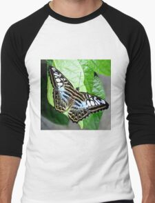 Blue Tiger Butterfly Men's Baseball ¾ T-Shirt