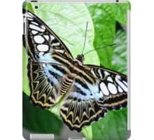 Blue Tiger Butterfly iPad Case/Skin