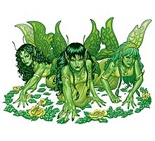 Green Fairy Trio  Photographic Print