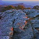 Mt William Sunrise by Harry Oldmeadow