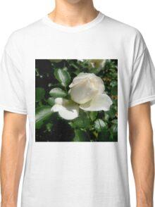 White Meidiland Shrub Rose Classic T-Shirt