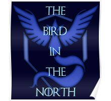 "Team Mystic - ""The Bird in the North""  Poster"