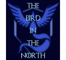 "Team Mystic - ""The Bird in the North""  Photographic Print"