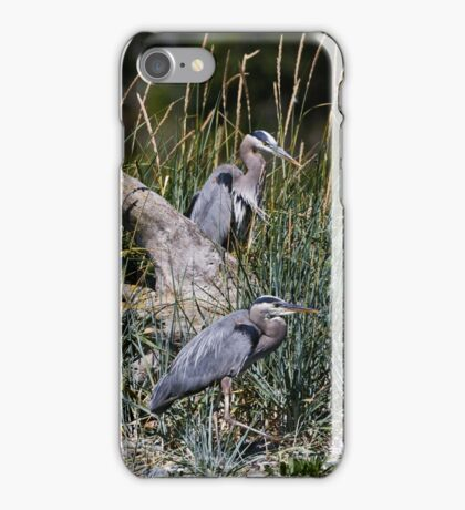 Two Hersons at Rest Among the Grasses iPhone Case/Skin