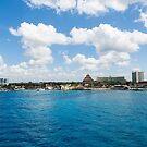 Coast of Cozumel  by dbvirago