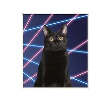 80'S LASER BACKGROUND CAT by Andrew Vox