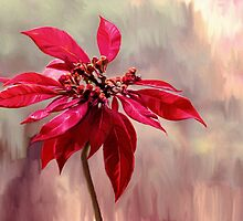 Poinsettia Painting by micklyn