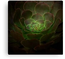 Black and Green Canvas Print