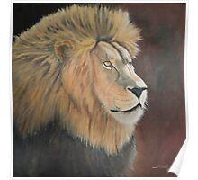 King of the Kalahari Poster