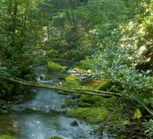 Cool forest stream Sticker
