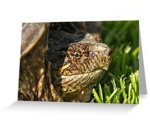 Big Snapping Turtle Greeting Card
