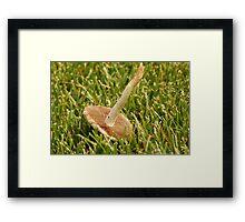 Turned Over Mushroom Framed Print