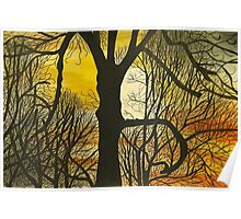 Tree at Sunset Beach Poster