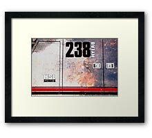 HYLAB-238  Rust Framed Print