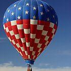 Flying The Colors by Loree McComb