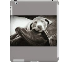 "OUR SILVER LAB ""GRACIE"" iPad Case/Skin"