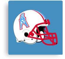 The Tennessee Titans Canvas Print