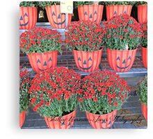 Mums in Jack-O-Lantern Flower Pots Canvas Print