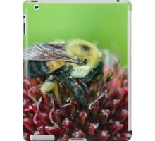 Too hot for a fur coat... iPad Case/Skin